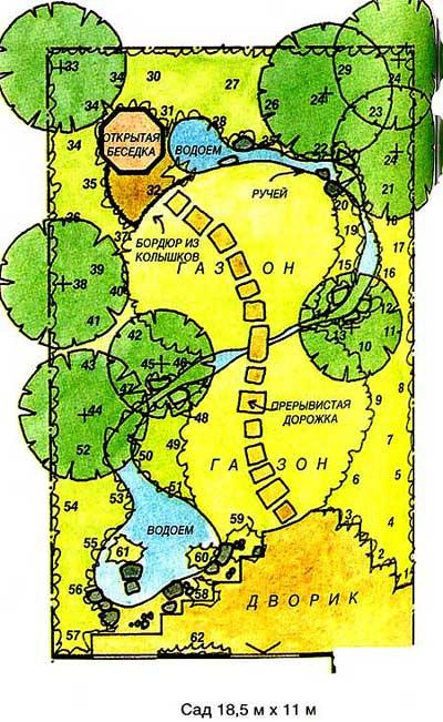 План сада с ручьем растения варианты