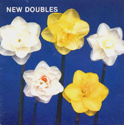 NEW DOUBLES